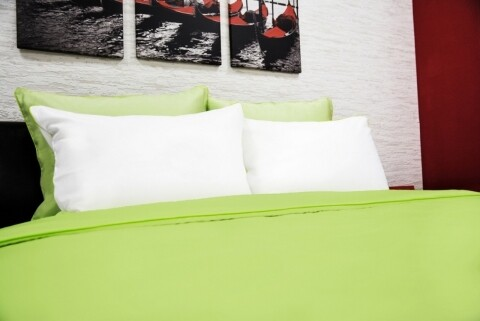100% Bamboo bed linen Green 2 persons