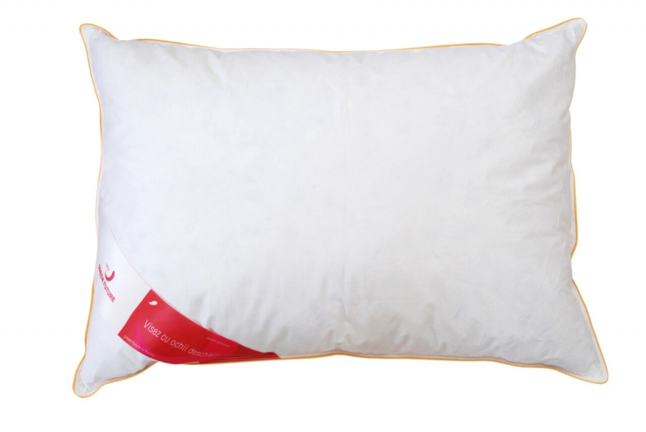 Feeling 50 Pillow 40x40 - 50% goose down, 50% goose feather